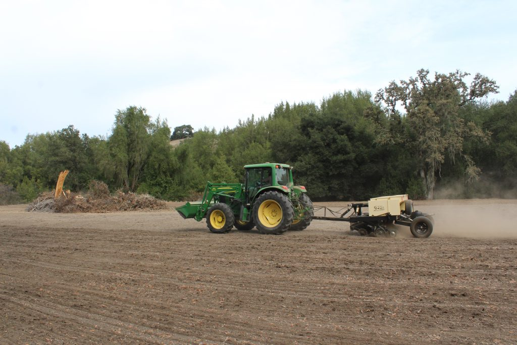 Preparing the soil for native grass seed
