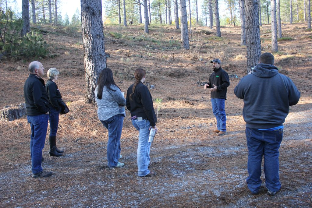 Cleveland-Icehouse Forest Health Project