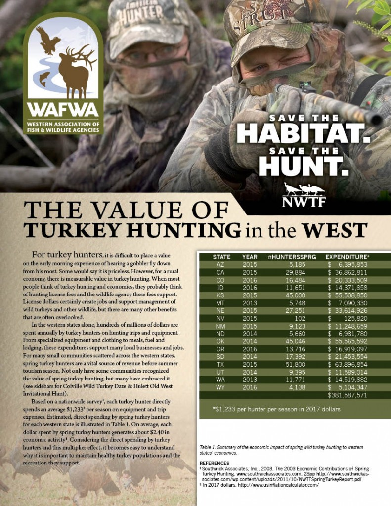 economic value of wild turkey hunting